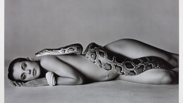 Lot 18 at Sotheby's, limited edition photographic print of 'Nastassja Kinski and the Serpent, Los Angeles, California, 1981' by Richard Avedon £62,500 (£50,000-£70,000)