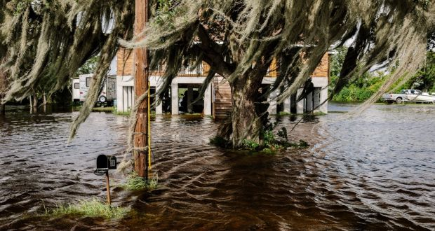 South Louisiana village Jean Lafitte: Steven Pinker is on firmer ground when charting the progress countries make as they grow richer and can afford to clean smog from their skies and start conserving, not plundering, nature. Photograph: William Widmer/The New York Times