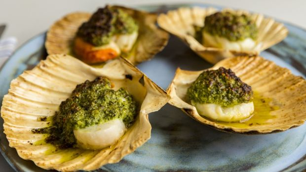 Grilled scallops with pumpkin seed, chilli and coriander sauce. Photograph: Emma Jervis