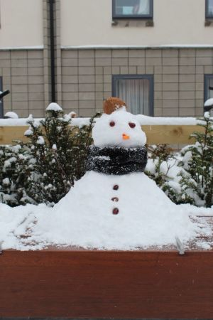 Snow man at Belgrove student residence, University College Dublin. Photograph: Jie Han