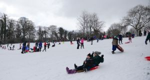 Hundreds of people took to the 'slopes' in Bushy Park, Terenure, Dublin on sleighs, sledges and dustbin lids to slide on the snow. Photograph: Bryan O'Brien/The Irish Times