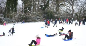 Hundreds of people took to the 'slopes' in Bushy Park, Terenure, Dublin on sleighs, sledges and dustbin lids to slide on the snow. Photograph: Bryan O'Brien/ The Irish Times
