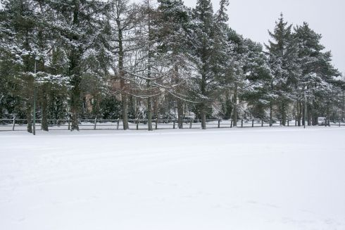Empty snowy school yard - Coolmine Community School, Dublin 15. Photograph: Gerard Lynch
