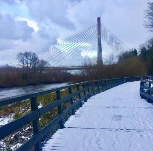 Drogheda's Boyne Cable Bridge. Photograph: Vicky Monahan