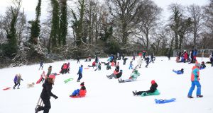 Hundreds of people took to the 'slopes' in Bushy Park, Terenure, Dublin on sleighs, sledges and dustbin lids to slide on the snow. Photograph: Bryan O'Brien