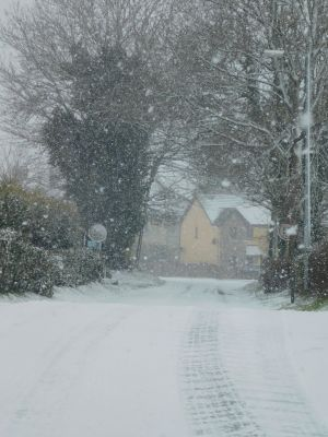 Snow at Newtownforbes, Longford. Photograph: Lisa Cronin