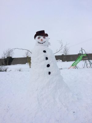 Giant Snowman made in Kildare by Clara, Finn and Ewan. Photograph: Mary Quinto