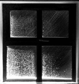 Cold out there: snow clings to windows. Photograph: Aidan Kelly