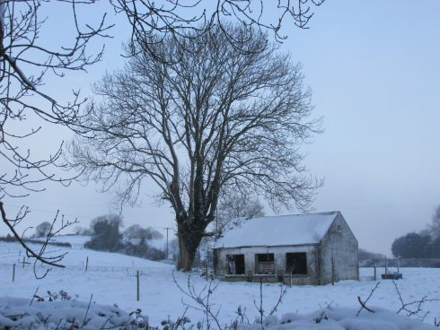 'Lots of snow here in Co Cavan'. Photograph: Ashling Cartwright Dewart
