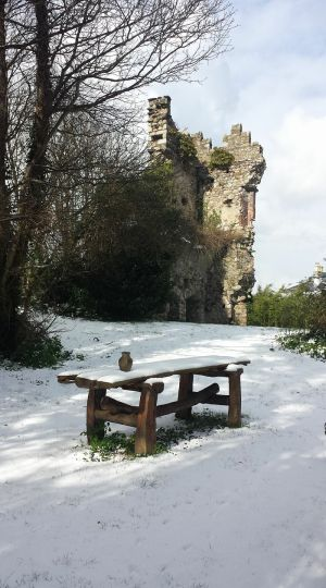 Castle in The Snow: Shanganagh, Shankill. Photograph: Brinsley Sheridan