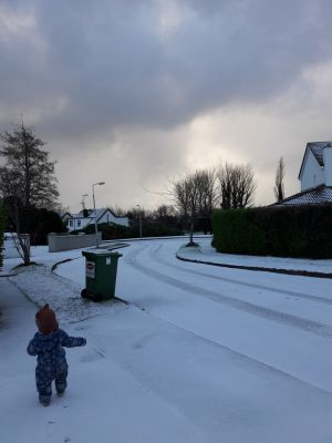 Early riser, Theo Nidecker Nyhan (17 months) surveys his street and his at dawn in Kilcoole, Co Wicklow on Wednesday morning. Photograph: Claire Nidecker