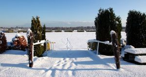 Leopardstown covered in snow in 2010. Photograph: Donall Farmer/Inpho