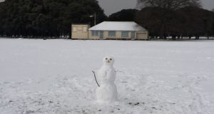 A weather-hardened local at the Civil Service Cricket Club, Phoenix Park, Dublin. Photograph: Frank McNally