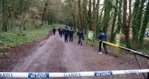 Gardaí conduct a search at Mitchell's Wood, Castlemartyr, Co Cork. Photograph: Michael Mac Sweeney/Provision