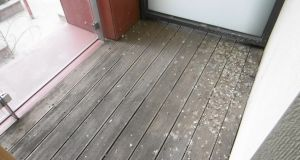 Balcony is  completely unusable as it is covered in bird excrement.