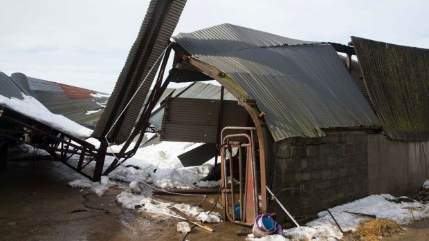 Karol Winters' farm in Taghmon, Co Wexford, where snow brought down sheds. Photograph: Patrick Browne