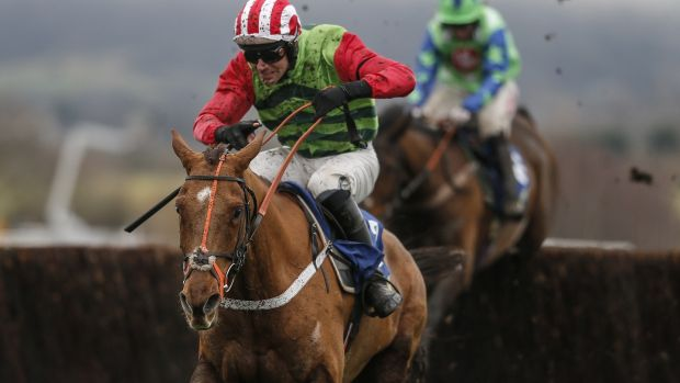 Definitly Red won the Cotswold Chase at Cheltenham in January. Photograph: Alan Crowhurst/Getty