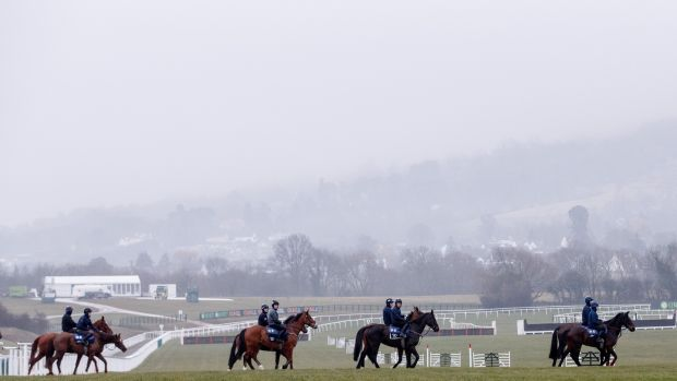 Gordon Elliott's string at Prestbury Park. Photograph: James Crombie/Inpho