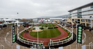 The 2018 Cheltenham Gold Cup field has now been reduced to 17 runners. Photograph: James Crombie/Inpho