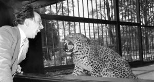 Inventively surreal: Ken Dodd with a leopard at Bristol Zoo in 1957. Photograph: PA Wire