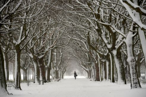 SON OF THE BEAST: Snow in Fairview Park, Dublin. Photograph: Dara Mac Dónaill/The Irish Times