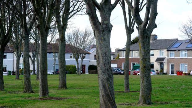 Marino Green is among the abundance of green spaces the local community has on its doorstep. Photograph: Cyril Byrne