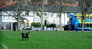 Marino Park is one the many green spaces this north city suburb has to offer. Photograph: Cyril Byrne