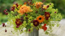 Flowers from the garden: calendula, tagetes, alchemilla, sanguisorba and dahlias. Photograph: Richard Johnston
