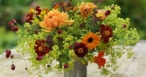 Flowers From The Garden: Calendula, Tagetes, Alchemilla, Sanguisorba And  Dahlias. Photograph