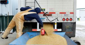 In retaliation to US tariff proposals China said it would impose tariffs on US goods including soybeans. Photograph: Dan Koeck/Reuters