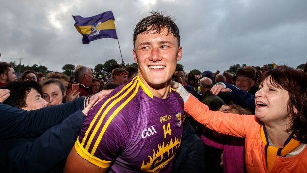 Lee Chin and Wexford fans celebrate the championship win over Kilkenny last summer. Photograph: James Crombie/Inpho