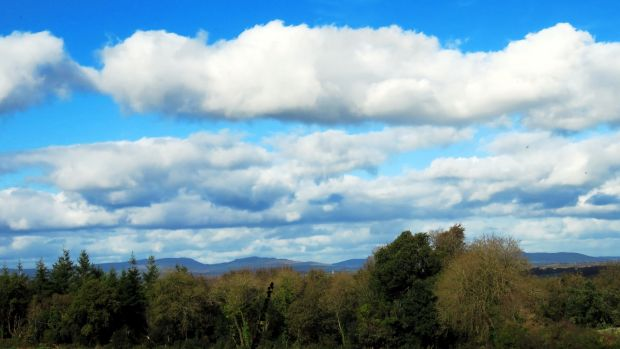 From Castleblagh Woods there are wonderful glimpses of the Ballyhouras and the Galtees bathed in the autumnal light.