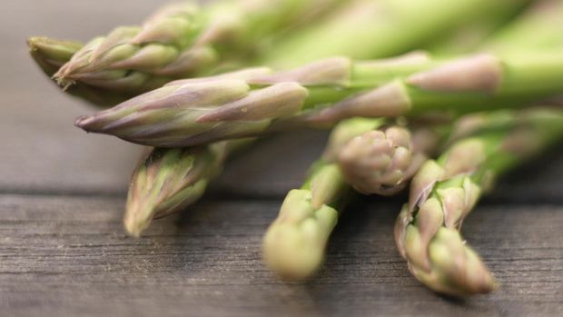 Give asparagus plants the right conditions, and they will be productive not just for several years but for several decades. Photograph: Richard Johnston