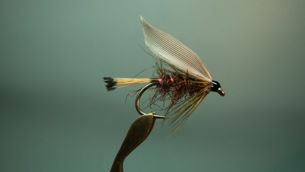 Blae-winged Sooty Olive. Tied by Jimmy Tyrrell