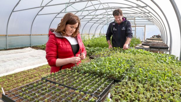 Mags and Joe Bohan in their polytunnel in Moyculen where they grow vegetables for their restaurant, Dela, in Galway city