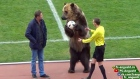 Muzzled bear forced to perform at Russian football match