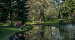 A  family relax by the pond at the National Botanic Gardens. Photograph: Brenda Fitzsimons