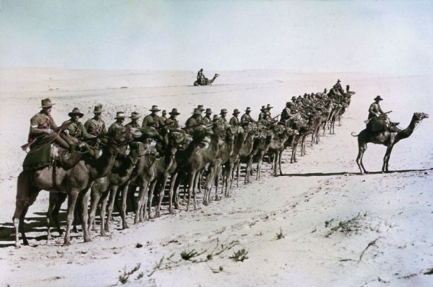 Australians of the Imperial Camel Corps near Rafa during the war against the Ottoman Empire. Photograph: Getty Images