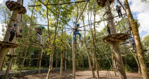 Treetop attraction: Castlecomer Discovery Park