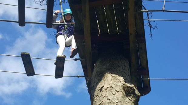 Branch out: Ellen (11) treetop walking in Castlecomer