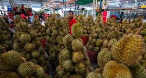 Durian fruit on sale at a market in Bangkok, Thailand. The pungent smell of the tropical fruit as it rotted caused a gas leak scare at an Australian university. Photograph: Athit Perawongmetha/Reuters.