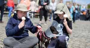 Enjoying the cones, Sam and Ian McKeen, from Blackrock, with their rescue dog Jilly, at Pets in the City event, Smithfield Square, Dublin. Photograph: Dara Mac Dónaill / The Irish Times