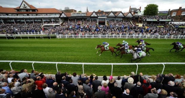 AT THE RACES LIVE