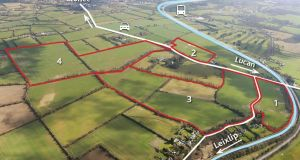 Willie Coonan is to invite offers of €30,000 to €50,000 per acre for the land if it is to be divided into four different lots – 13 acres, 16 acres, 57 acres and 97 acres
