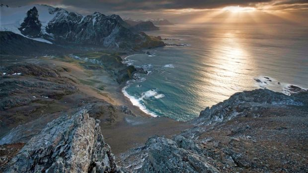 The remote wildlife-rich island of South Georgia has been officially declared free of rats and mice. Photograph: Oliver Prince/PA Wire