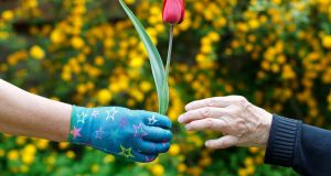 The Dementia: Understanding Together campaign has put together five tips for people to make their own gardens dementia friendly. Photograph: iStock