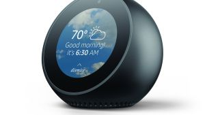 Amazon Echo Spot: not only does Alexa help you out in her nice, polite, slightly unnerving way, but now it has a built-in display.
