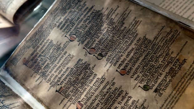 The 14th century honeybee manuscript in the Long Room of Trinity College. Photograph: Cyril Byrne/The Irish Times