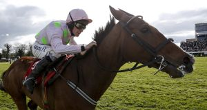 Faugheen:  was an odds-on favourite to defend his Champion Hurdle crown in 2016. Photograph:  Alan Crowhurst/Getty Images