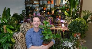Diarmuid Gavin, with the type of plants that will be for sale in Dunnes. Photograph: Dara Mac Dónaill / The Irish Times